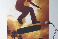 nlt-panoramique-skate