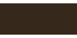 Logo Toulemonde Bochart, créateur de tapis