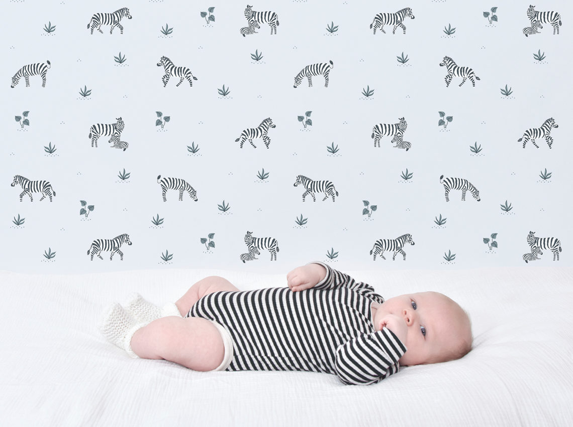 papier peint bébé zèbre